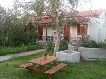 Mr. Greek Villa, Petra, Greece, Lesbos, hotel, Hotels