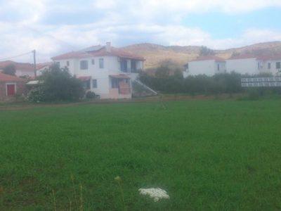 Studio Evridiki, Petra, Greece, Lesbos, hotel, Hotels