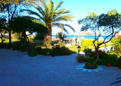 Studios Stefani, Petra, Greece, Lesbos, hotel, Hotels
